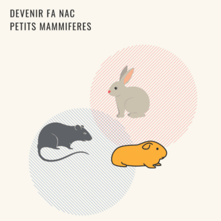 Devenir FA NAC petits mammifères