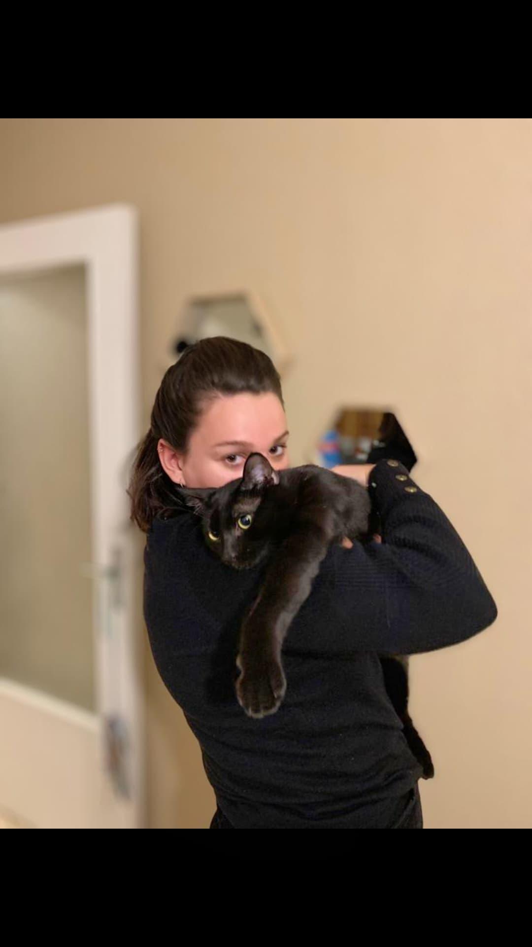 famille accueil chat rien que pour eux