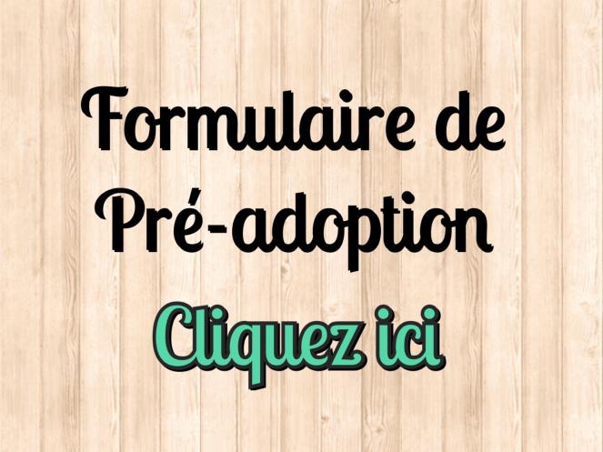 formulaire de pré adoption chat association rien que pour eux